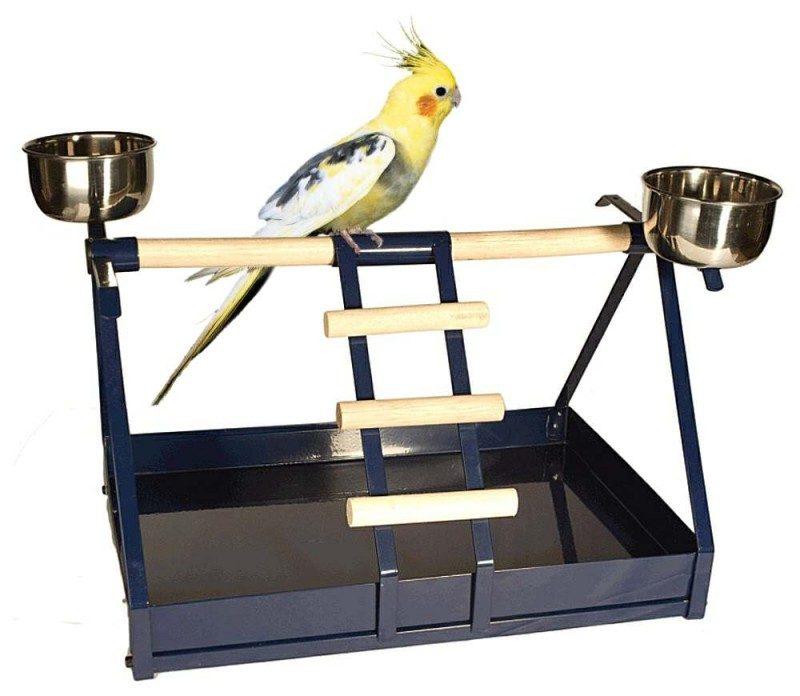 trespolo pappagallo