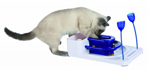 gatto food puzzle
